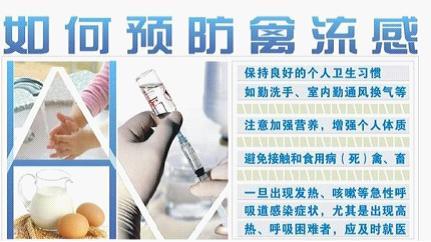 H7N9来袭 牛皮癣患者该如何应对